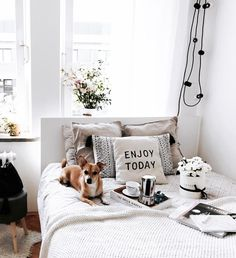 Gorgeous bedroom styling and puppy via (@pannalemoniada) on Instagram