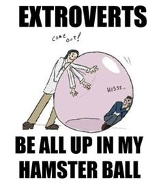 Extroverts be all up in my hamster ball. This is great!