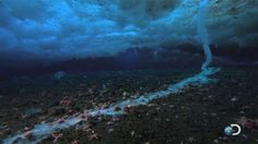 """Filmed for the first time, the icy """"finger of death"""" is an unprecedented look at nature's beauty -- seen at its devastating worst. Salty brine, heavier and much colder than the surrounding sea water freezes anything it touches as it seeps into cracks in the ice to the water below"""