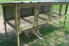 Outdoor Rabbit Hutch for adult Meat Rabbits and/or as a Grow out pen.