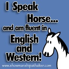 Speak Horse, hahahahahahahahahahahahahaha i know it is not that funny but oh lordy that is so funny