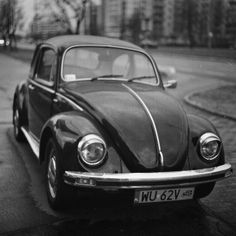 beetle, vw, cars, car