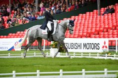 Mitsubishi Motors Badminton Horse Trials | Dressage Day Two 2014 Tiana Coudray and Ringwood Magister