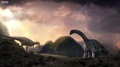 Argentinosaurus nests were always being eaten by for example venoraptor. With giganotosaurus it was able to grab little pieces of of the sauropods for it's food. Keeping the sauropods alive was vital for their food.