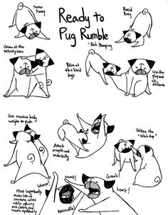 Bah Humpug: Let's Get Ready To Pug Ruuumbbble!  Inspired by Sunny's and Rosy's recent play/fighting, here are some common pug maneuvers.