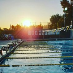 "MySwimPro on Instagram: ""Another workout, another #SunsetSwim 🏊🌇⁣ ⁣ Tag @MySwimPro with your best pool views! Pic by @ali_chesh_ca"" Swimming Pictures, Cool Pools, Railroad Tracks, Fair Grounds, Workout, Sunset, Building, Ali, Travel"