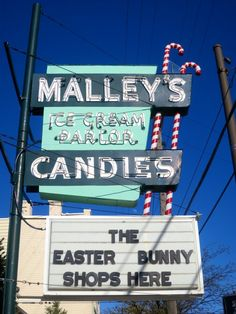 The Easter Bunny Shops in Lakewood