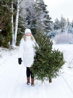 Bringing home the Christmas tree Twelve Days Of Christmas, Christmas Tree Farm, Christmas Mood, Santa Christmas, Country Christmas, Christmas Colors, Christmas Themes, White Christmas, Xmas