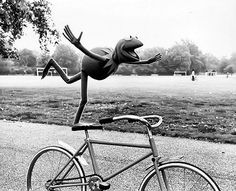 The best photo. Kermit the Frog on a bike