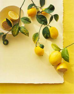 citroenversiering