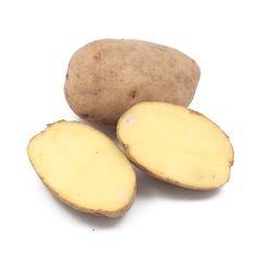 German Butterball Organic Potato (Lb) - Organic Potato Seed - Seed Potatoes - Seeds