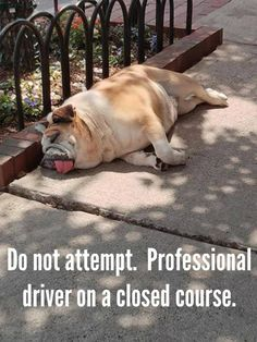 Do not attempt. Professional driver on a closed course.