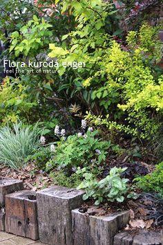 入口アプローチのミニ花壇植栽 の画像|フローラのガーデニング・園芸作業日記