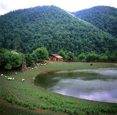 Landscape in Gilan Province, Iran. Gilan Province is one of the 31 provinces of Iran. It lies along the Caspian Sea, and borders the Republic of Azerbaijan in the north, as well as Russia across the Caspian Sea. (V)