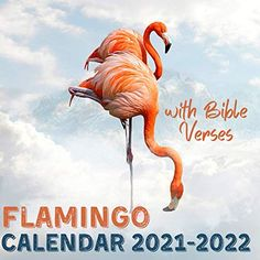 Flamingo Calendar 2021-2022: With Bible Verses April 2021 - June 2022 Square Photo Book Monthly Planner Mini Calendar... Monthly Planner Printable, Printable Calendar Template, Kids Calendar, 2021 Calendar, Flamingo Illustration, Flamingo Gifts, Planner Book, Book Club Books, Photo Book