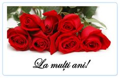 Will you be asking an important question to some one you love this Valentines Day? 8 Martie, Beautiful Roses, Romania, Red Roses, Valentines, This Or That Questions, Image Search, Google, Beauty Makeup