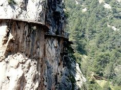 People take this death-defying journey every day. You won't believe where it ends.