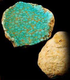 This is an awesome Natural Number 8 Spiderweb Turquoise Clam, it is pre-historic and a rarity in evolution. Read more about this on our Spiderweb Turquoise presentation by following this link.