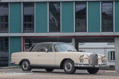 Mercedes-Benz 250 SE Coupé - edle Sportlichkeit mit Alltagsnutzen © Daniel Reinhard #MercedesBenz #zwischengas #classiccar #classiccars #oldtimer #oldtimers #auto #car #cars #vintage #retro #classic #fahrzeug