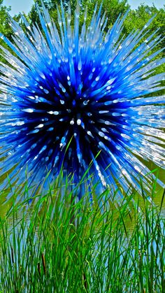Blue Moon | Dale Chihuly, born 1941 Glass and stainless stee… | ellenm1 | Flickr