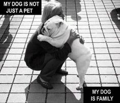 All my furry babies are my family! ♥ And they're ALL rescued animals too!