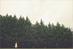 w. scott chester • photo blog
