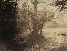 Gustave Le Gray (French, 1820–1884) Albumen silver print from glass negative; 12 1/2 x 16 5/16 in. (31.8 x 41.4 cm)