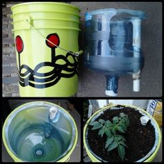 a mother-load of SWC (self-watering container) how-tos