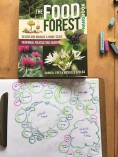 Food forest permaculture design ideas