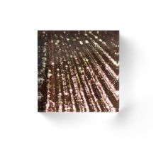 'Triton´s Secrets - Shining Bronze ' by Niina Niskanen Original Paintings, Original Art, Brown Art, Mermaid Art, Framed Prints, Art Prints, Home Art, Wall Tapestry, Decorative Throw Pillows
