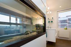 Originální řešení terária pro želvy Aquarium, Goldfish Bowl, Aquarium Fish Tank, Aquarius, Fish Tank