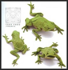 This paper craft is a Japanese Tree Frog (Hyla japonica) origami, the Japanese tree frog is a species of tree frog distributed from Hokkaidō to Yakushima i