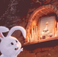 Kawaii Wallpaper, Disney Wallpaper, Snowball Rabbit, Cute Bunny Cartoon, Beautiful Rabbit, Pets Movie, Cute Doodles, Pet Rabbit, Cute Cartoon Wallpapers