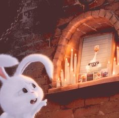 Rabbit Wallpaper, Kawaii Wallpaper, Disney Wallpaper, Snowball Rabbit, Cute Bunny Cartoon, Pets Movie, Pet 1, Secret Life Of Pets, Pet Rabbit