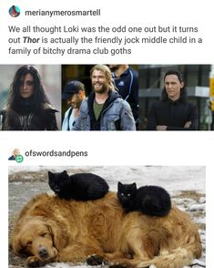"""""""Thor is the friendly jock middle child in a family of bitchy drama . - New picture - """"Thor is the friendly jock middle child in a family of bitchy drama … – - Marvel Jokes, Marvel Avengers, Funny Marvel Memes, Dc Memes, Avengers Memes, Marvel Dc Comics, Memes Humor, Superhero Memes, Funny Memes"""