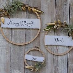 How to make an air plant wreath:
