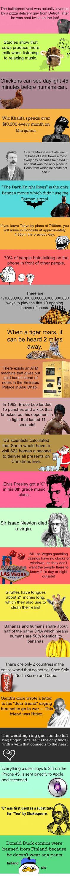 Haha Santa must be REALLLY fast!! It's almost like magic!! ;)