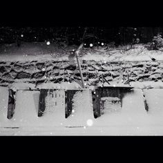 #dogwalkproject #hikaricreative  #everydayturkey #noir #monochromatic #bw #hartcollective by oz_dogwalk