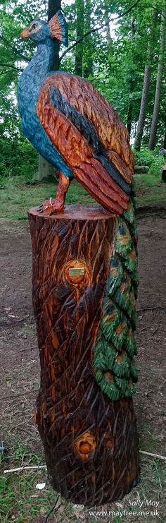 Peacock chainsaw carving by Sally May