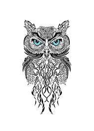 """Résultat de recherche d'images pour """"owl drawing"""""""