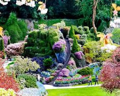 Butchart Gardens, British Columbia, Canada by phamdiep.quynh Butchart Gardens, British Columbia, Canada by phamdiep. British Columbia, Amazing Gardens, Beautiful Gardens, Beautiful World, Beautiful Places, Beautiful Stairs, Amazing Places, Beautiful Sites, Beautiful Scenery