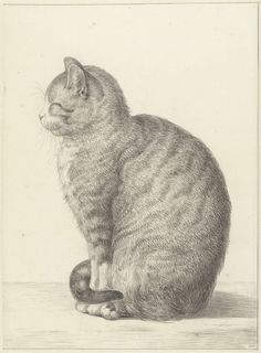 Enjoy the works of a variety of illustrated cats with this beautiful Artful Cat calendar for Featuring a new painting each month, it's the perfect calendar for cat lovers everywhere! Maurice Careme, Leave Art, Cat Calendar, Calendar 2017, Smiling Cat, Image Cat, Cat Sitting, Cat Drawing, Free Illustrations