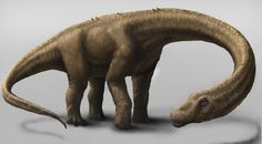 Newly discovered dinosaur, Dreadnoughtus, takes title of largest terrestrial animal at 65 tons—more than a Boeing 737!