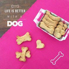 Essa receita é para o seu melhor amigo, um biscoito bom pra cachorro. Afinal a alimentação dos nossos bichinhos, também merece cuidado especial. West Terrier, Bull Terrier, Dog Bakery, Dog Cookies, Pet Treats, Love Pet, Diy Stuffed Animals, Snack, Dog Care