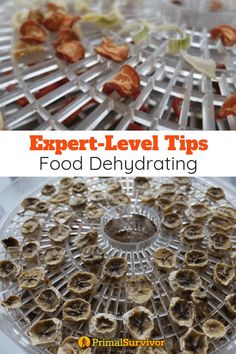 ExpertLevel Food Dehydrating Tips and Hacks for Drying All Types of Food is part of Dehydrator recipes Go beyond dehydrating food like fruits and veggies Use these expertlevel tips to learn to make - Dehydrated Vegetables, Dehydrated Food, Dehydrated Apples, Emergency Food, Survival Food, Survival Tips, Survival Skills, Survival Quotes, Homestead Survival