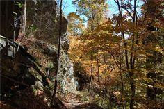 Gone Hikin': Shenandoah National Park, VA - Whiteoak Canyon/Hawksbill Mountain/Cedar Run