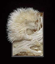 paper sculptures by Calvin Nicholls.