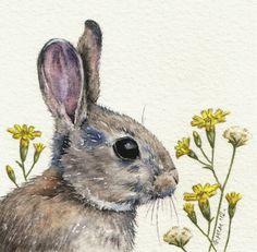 Original Watercolour Painting - Rabbit via Etsy