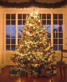 Google Image Result for http://4.bp.blogspot.com/_OAh4Xl94vrU/SzIe2vftnGI/AAAAAAAAPJo/U6xZupfK9kY/s400/martha+stewart+christmas+tree+3.jpg