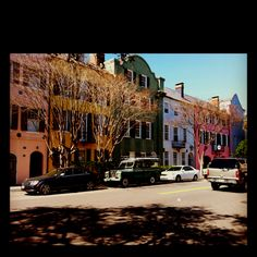 Pictures don't do justice to how beautiful Charleston, SC is.